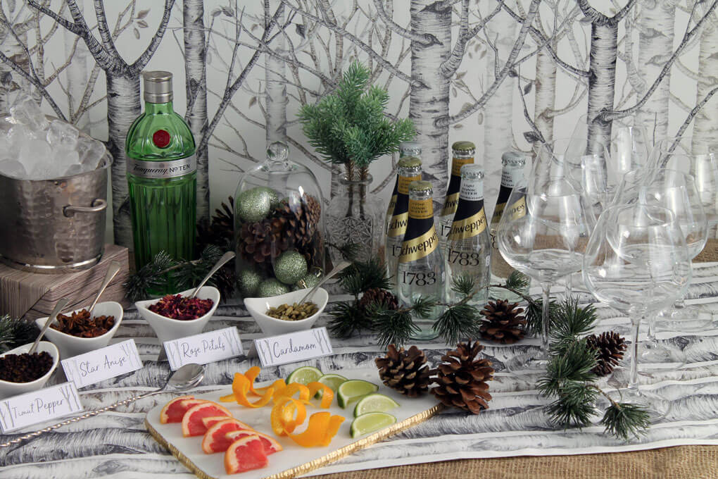Gin and Tonic bar with different infussion herbs, fruits, and spices.
